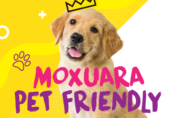 Moxuara Pet Friendly
